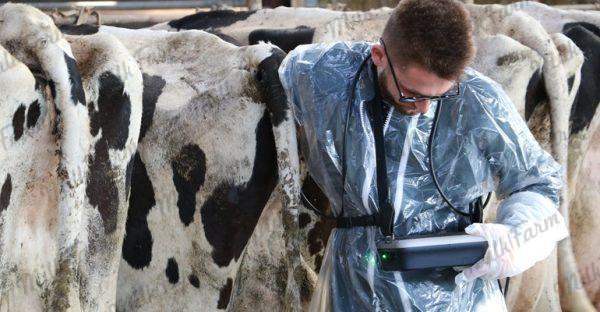imago-L-milkfarm-ultrasound-sec-repro-ветеринарный-узи-сканер